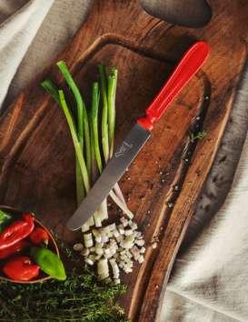 Le Couteau chien Thiers Issar © Cécile Chabert